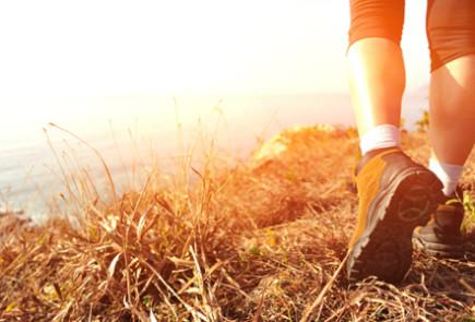Blog-10114- Learning to Walk with Flexibility and Gratitude  (El Camino de Santiago de Compostela, Part 2)